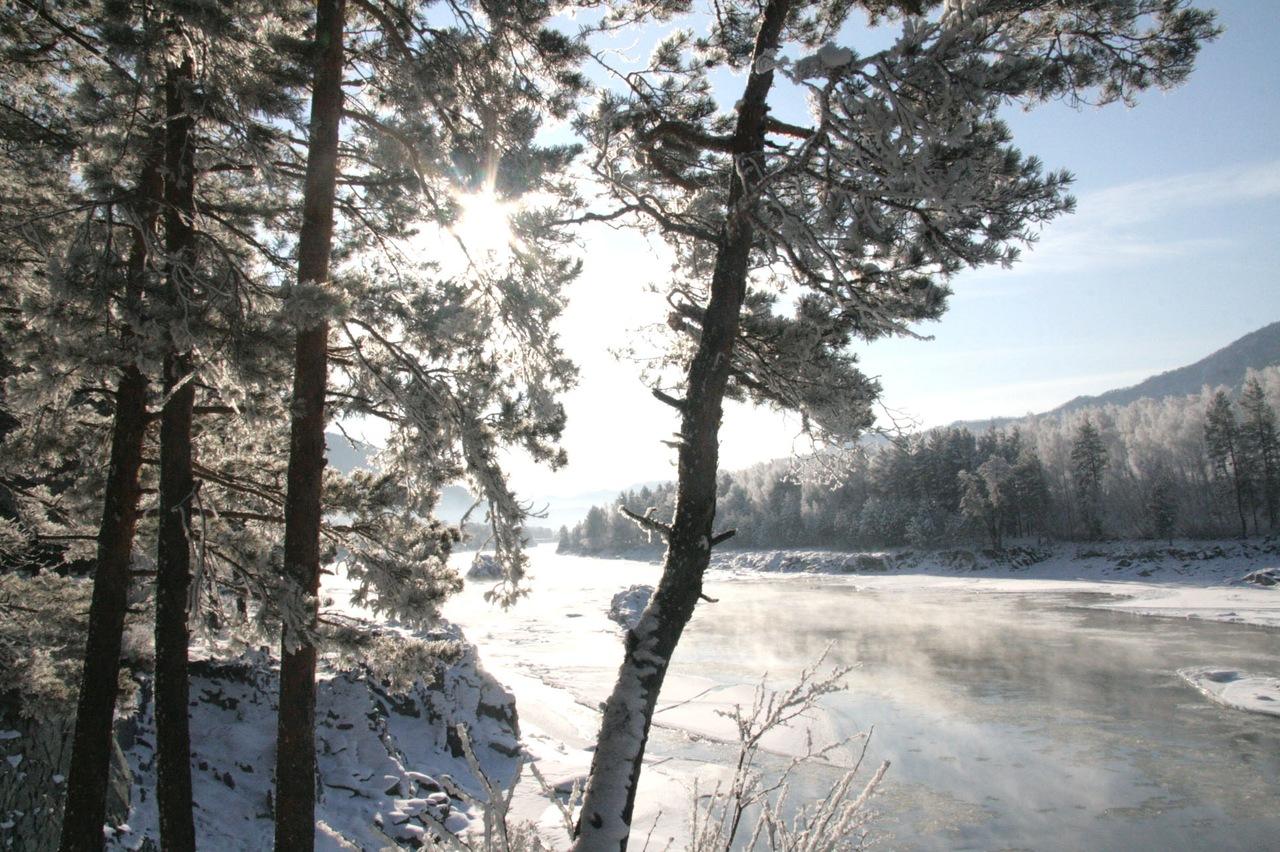 Фото природы алтайского края зимой
