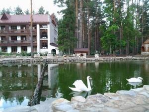 отели, мотели, гостиницы города Гусь Хрустальный - контакты, цены проживания