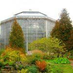 20 самых важных фактов про Ботанический сад в Питере: режим работы, цены, отзывы