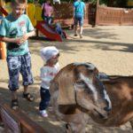 45 самых интересных мест для отдыха с детьми в Челябинске: отзывы, советы, описания