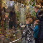 35 самых интересных мест Владимира, в которые можно сходить с детьми!